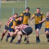 Castellana Rugby, il resoconto dell'ultimo weekend di gare